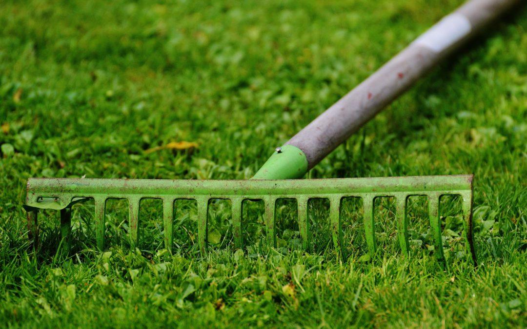 Conseils de jardinage - AJL