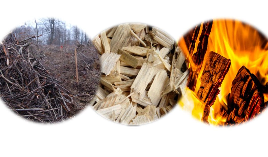Comment transformer en opportunité la problématique de la gestion coûteuse des déchets verts ligneux ?