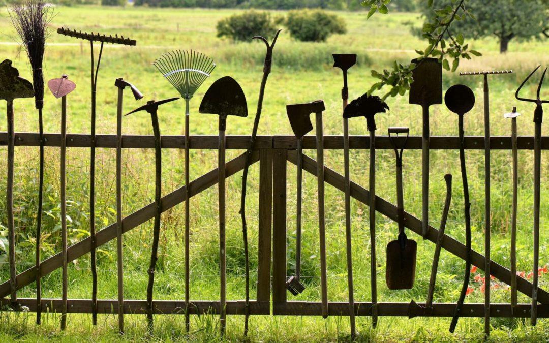 Agence Jardinière Locale: des rencontres, des échanges, et de la bonne humeur!